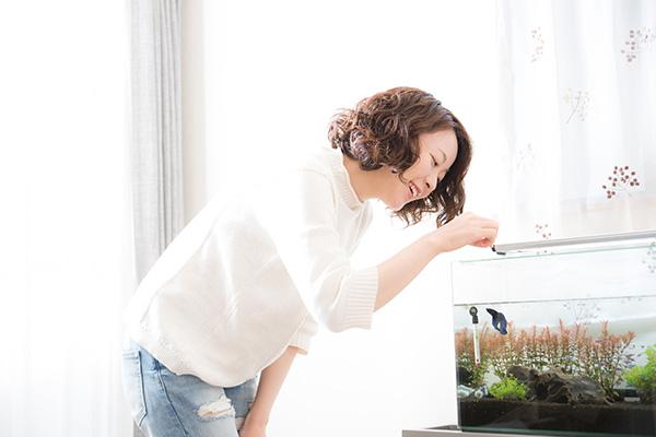 株式会社Axiz(アクシズ)| 兵庫県三田市/アクアリウム用品(観賞魚用品)の製造・販売